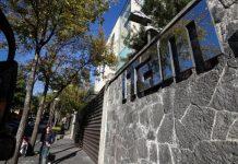 Muerte de alumna del ITAM fue detonada por humillación de profesor
