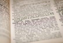 Diccionario 2019 en 400 palabras red es poder
