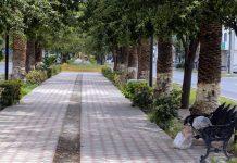 Coahuila llega a 104 positivos de covid-19; dos nuevos contagios en Torreón red es poder