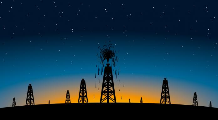 El Petrovid-19: la moneda invisible que impone su valor petróleo red es poder