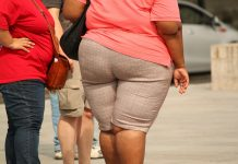 En Coahuila el 5.28% de su población tiene obesidad red es poder