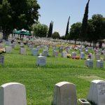 Epidemia de la Covid-19 en Coahuila cobra 700 vidas red es poder