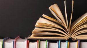 Sobre lo bello y la literatura red es poder