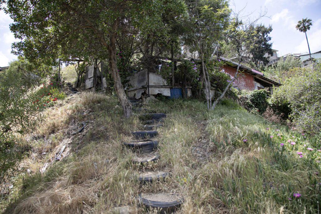 Camino para llegar a la casa de Ignacia Cruz. Crédito: Eduardo Jaramillo.
