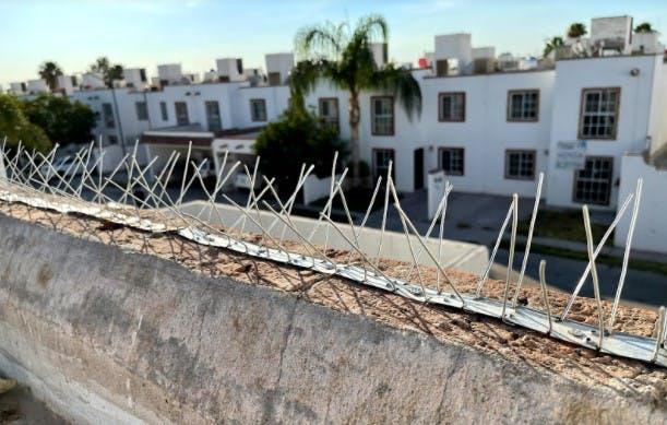 """Estos son los dispositivos antiaves que instala José Guajardo, """"el exterminador"""", en los techos de las casas."""